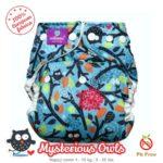 Milovia Cover Mysterious Owl